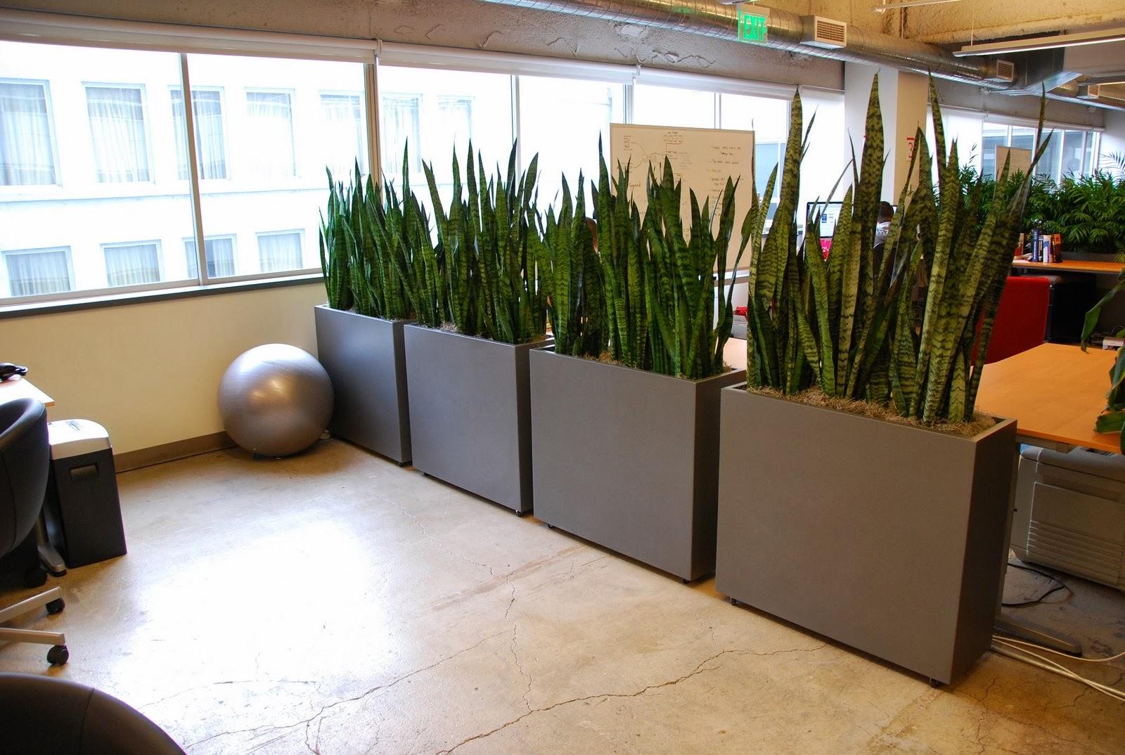 Contemporary Bureau Desk
