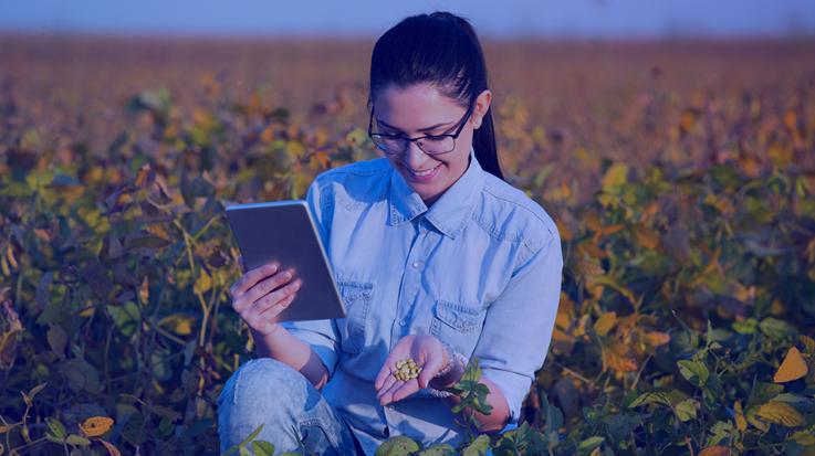 mulher com tablet na plantação